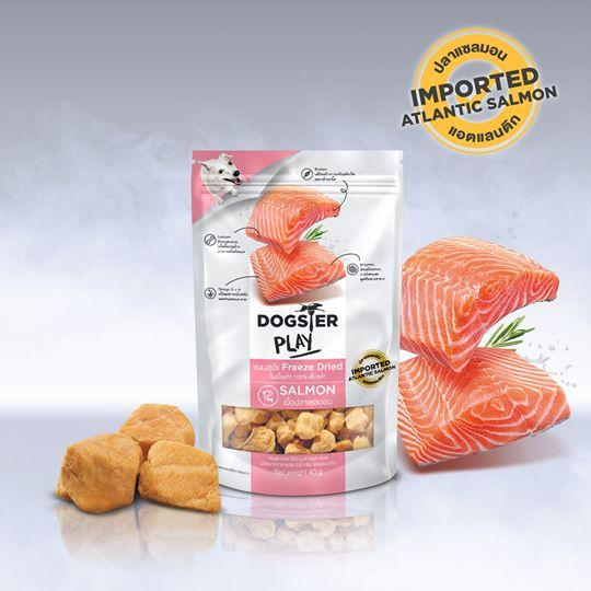 Dogster Play Freeze Dried Salmon (40G)